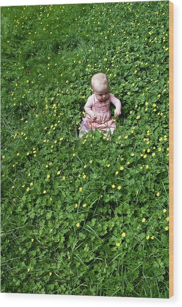 Baby In A Field Of Flowers Wood Print
