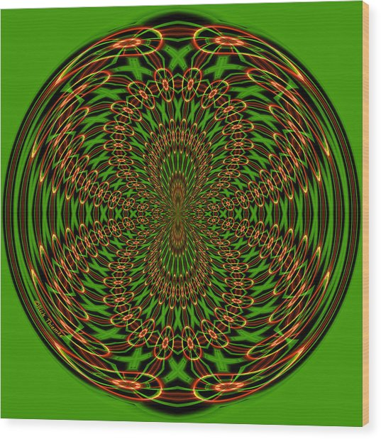 Back Into Itself Wood Print by Rick Thiemke