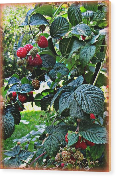 Backyard Berries Wood Print