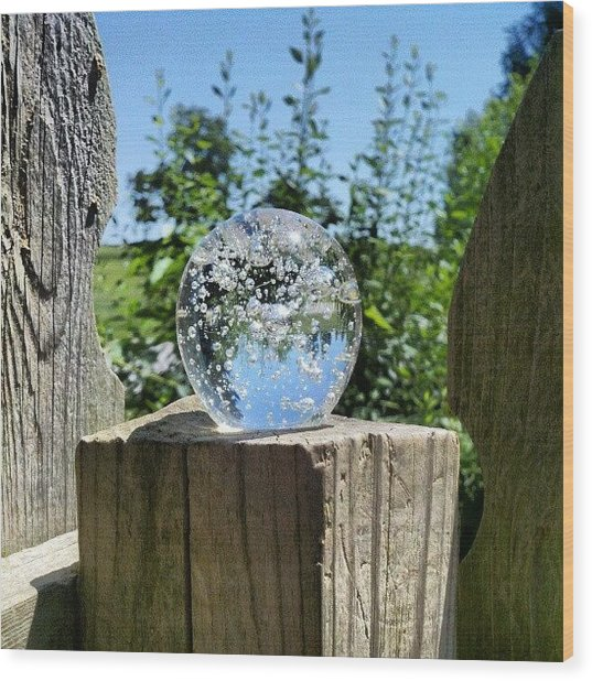 Backyard Magic #crystalball #magic Wood Print