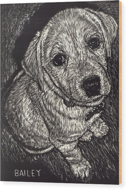 Bailey The Puppy Wood Print by Robert Goudreau