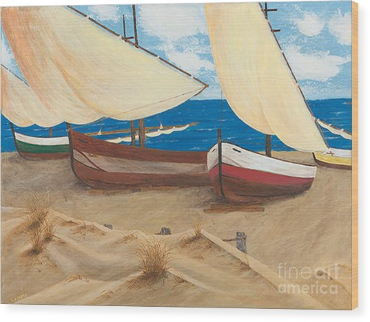 Baja Beach Dunes Wood Print