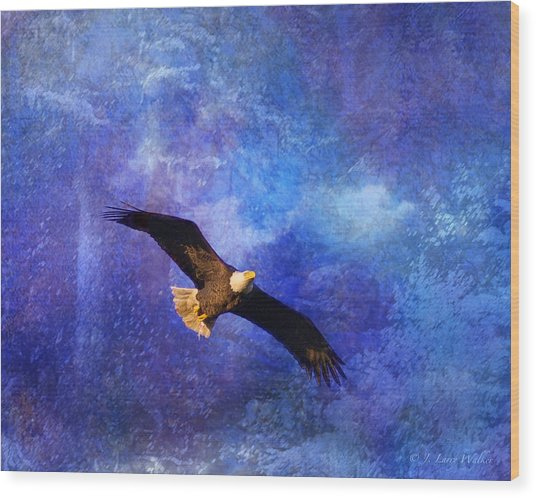 Bald Eagle Bringing A Fish Wood Print