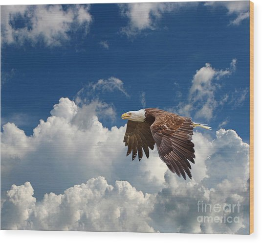 Bald Eagle In The Clouds Wood Print by Dale Erickson
