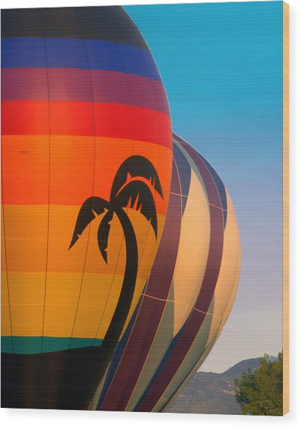 Balloon Launch Wood Print by Carol Norman