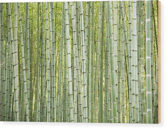 Bamboo Trees Background Wood Print by Vaidas Bucys