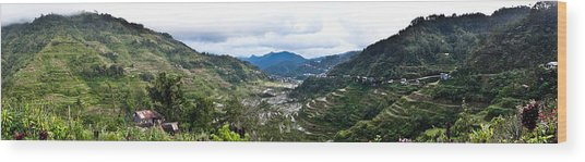 Banaue Rice Terraces Wood Print