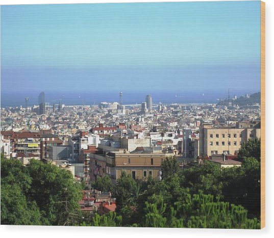 Barcelona Close Up View From Park Guell In Spain Wood Print by John Shiron