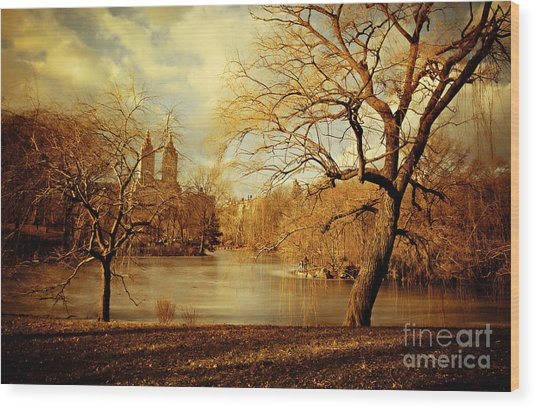Bare Beauty In Central Park Wood Print