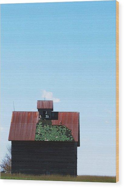 Barn-12 Wood Print by Todd Sherlock