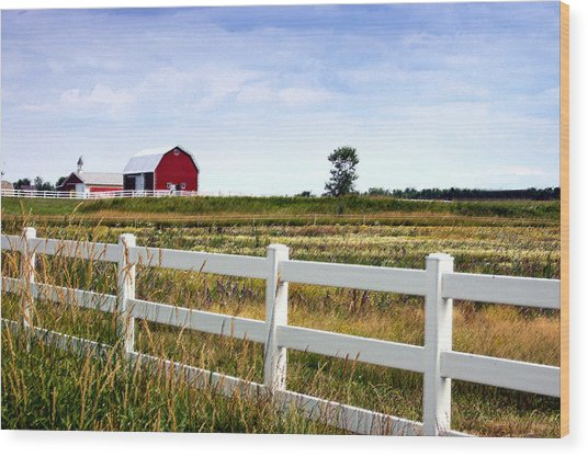 Barn And Fence Wood Print by Cheryl Cencich
