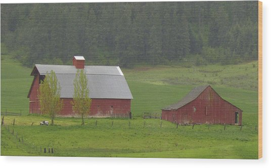 Barns Of The Palouse 5 Wood Print by Tony and Kristi Middleton