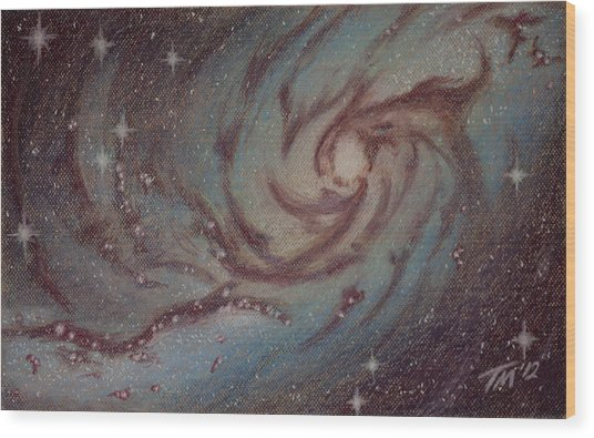Barred Spiral Galaxy Ngc 1313 Wood Print by Thomas Maynard