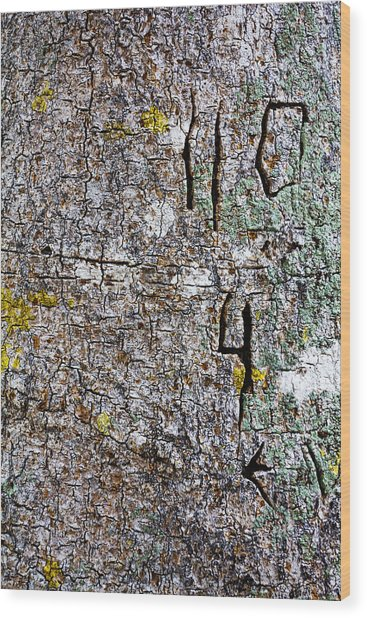 Battle Scars Of The Defensless Wood Print by Nicholas Evans