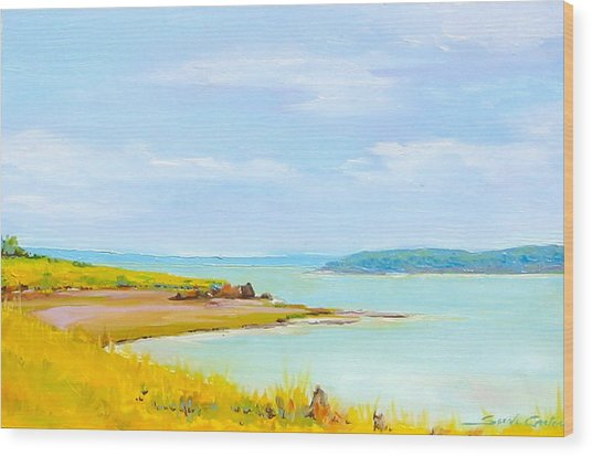Bay Of Fundy From Eastport Wood Print
