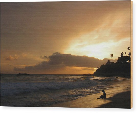 Beach Girl Sunset Wood Print by Ed Golden