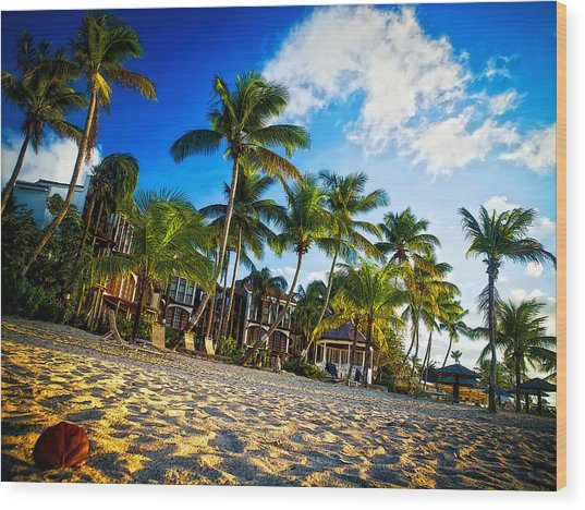 Beach Rendezvous Wood Print