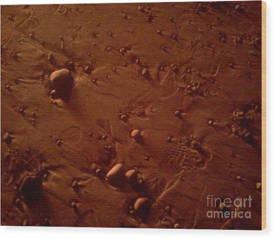 Beach Stones In Bonfire Glow Wood Print by Wendy Marelli
