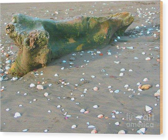 Beachcombing Wood Print