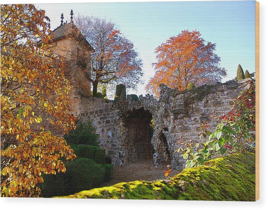 Beaune Gate Wood Print by Michael Dantuono