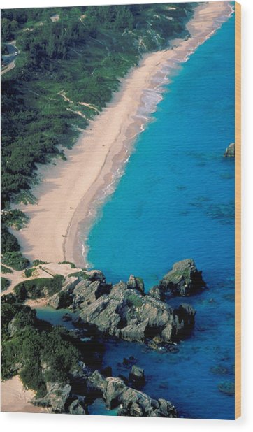 Beautiful Bermuda Beach Wood Print by Carl Purcell