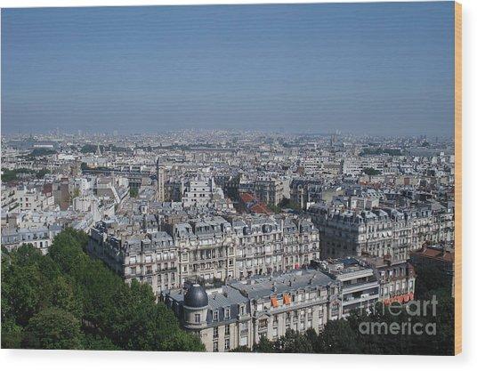 Beautiful Paris Wood Print by David Peters