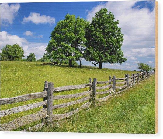 Beautiful Virginia Pasture Wood Print