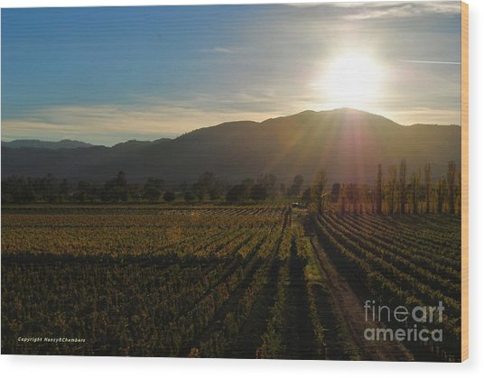 Beauty In The Vineyards Wood Print