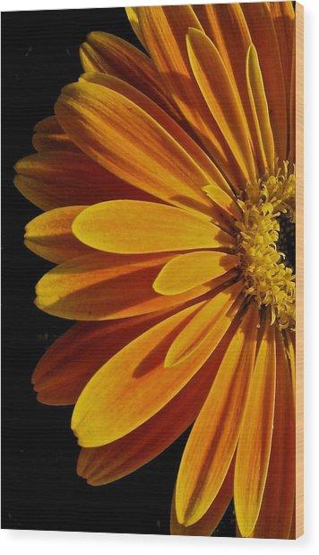 Beauty Wood Print by Jyotsna Chandra