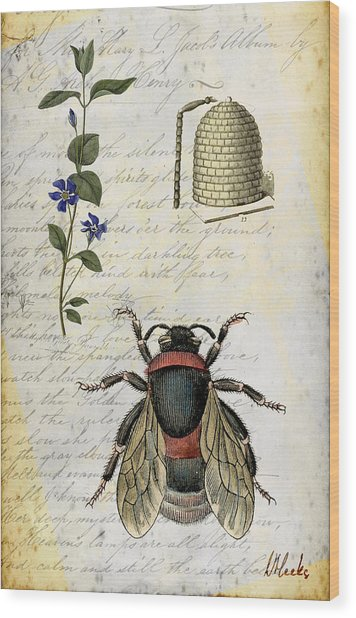 Bee Flower Hive  Wood Print