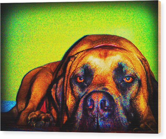 Beefy Girl In Bright Colors Wood Print