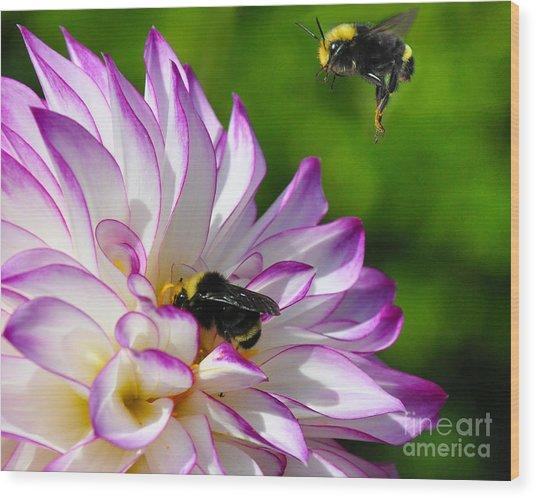 Bees N Blooms Wood Print