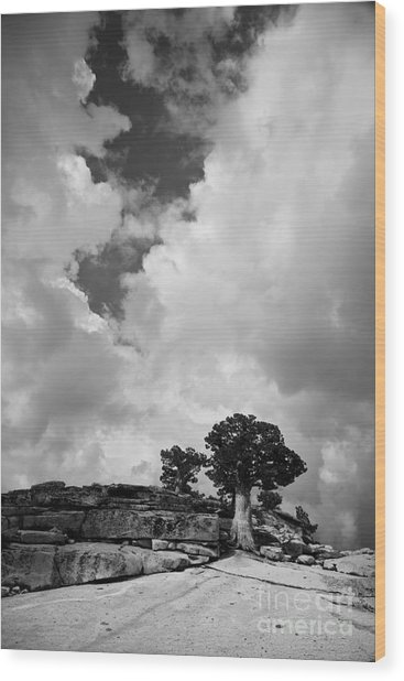 Before The Storm 2 Wood Print
