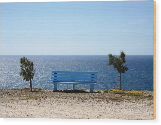 Bench With A View Wood Print by Phoenix Michael  Davis