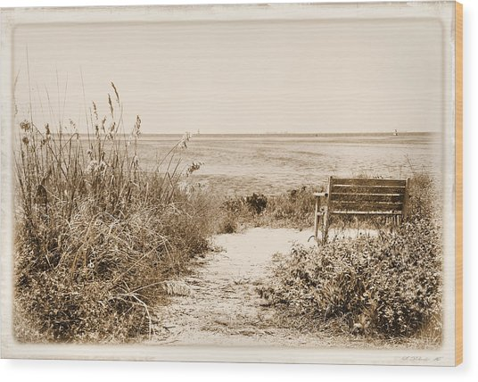 Bench With A View Wood Print by Rosalie Scanlon