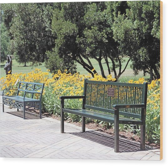 Benches  Wood Print