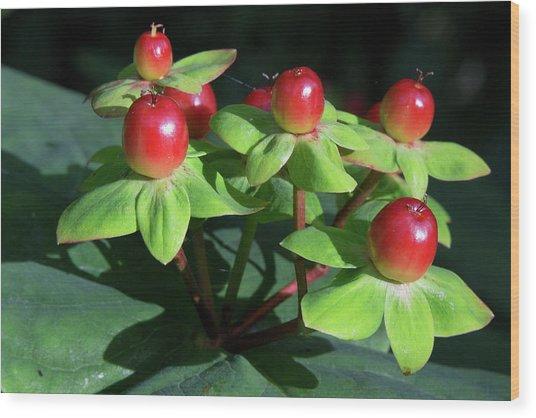 Berry Pretty Wood Print