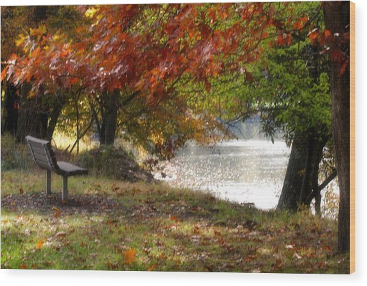 Best Seat On The Bank Wood Print by Darlene Bell