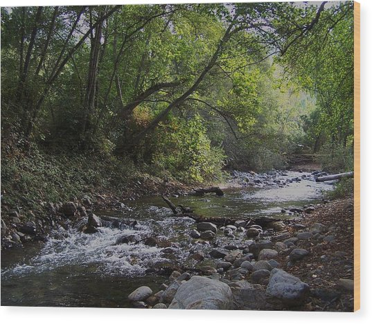 Big Sur River Wood Print
