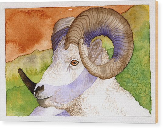 Bighorn Wood Print by Eunice Olson