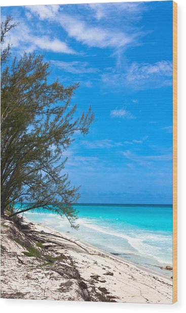 Bimini Beach Wood Print