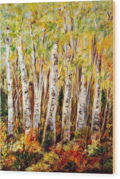 Birch Tree In Sunshine Wood Print