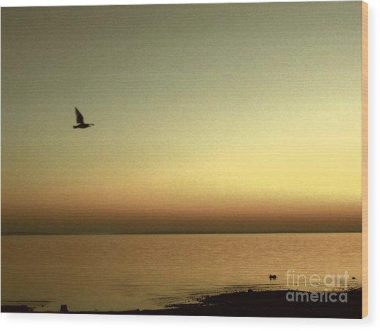 Bird At Sunrise - Sepia Wood Print