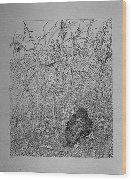 Bird In Winter Wood Print