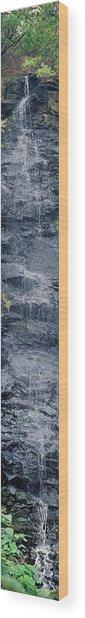 Bird Park Waterfall Wood Print by Miguel Capelo