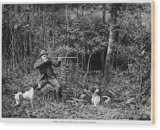 Bird Shooting, 1886 Wood Print