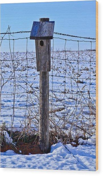 Birdhouse In The Snow Wood Print by Julio n Brenda JnB