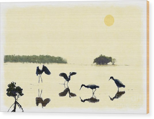 birds feeding in the Everglades Wood Print