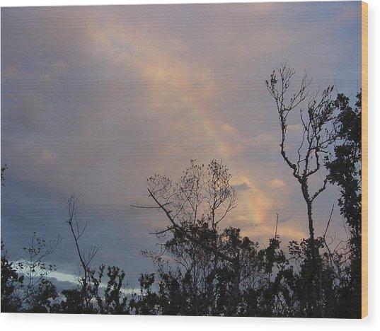 Birth Of A Rainbow Wood Print by Frank Wickham