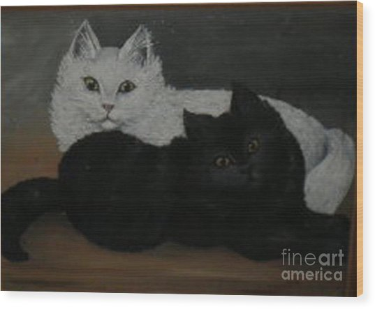 Black And White Cats Wood Print by Hilda Schreiber